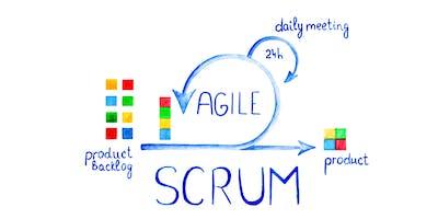 Fare il doppio in metà tempo. Gestione agile dei progetti con Scrum.