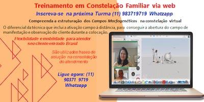 ATENDIMENTO DE CONSTELAÇÃO FAMILIAR ONLINE - via web