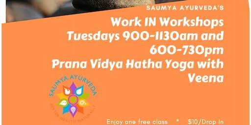 Prana Vidya Hatha Yoga
