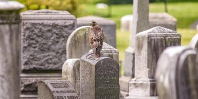 Hidden History Stroll: Walking Tour of The Evergreens Cemetery