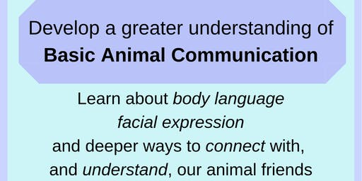 Basic Animal Communication