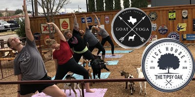 NTX Goat Yoga at The Tipsy Oak