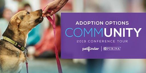 Asheville Adoption Options