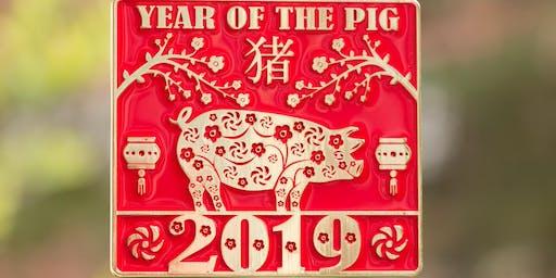 2019 The New Year Running/Walking Challenge-Year of the Pig -Boston