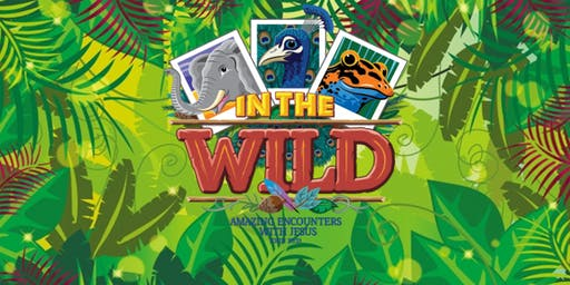 Vacation Bible School 2019:  Into the Wild