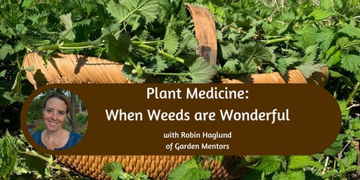 Plant Medicine: When Weeds are Wonderful