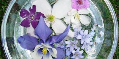 Flower Essence Making - Chestnut Hill