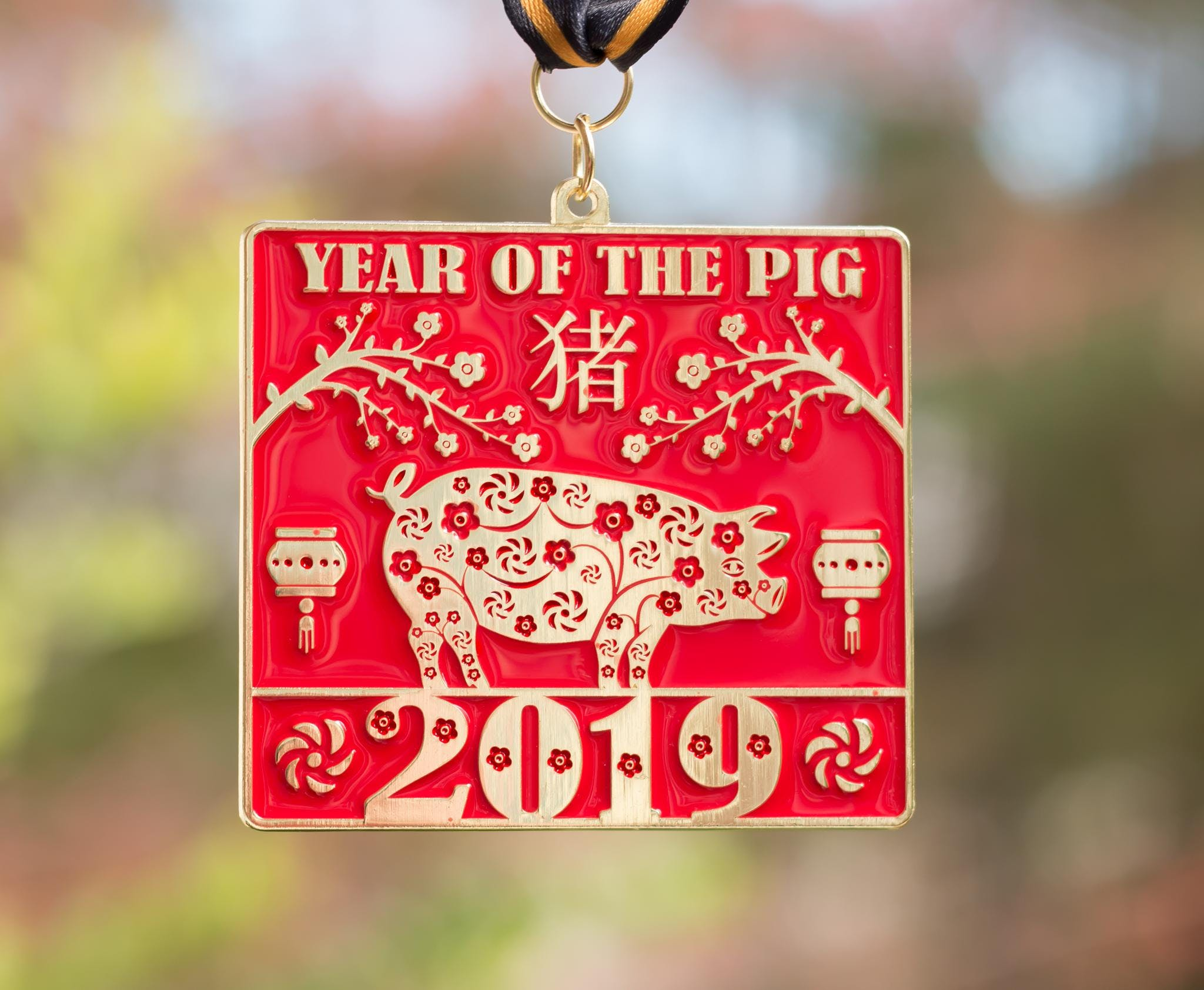 2019 The New Year Running/Walking Challenge-Year of the Pig -Phoenix