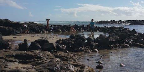 Kaiwi Shoreline Restoration  tickets