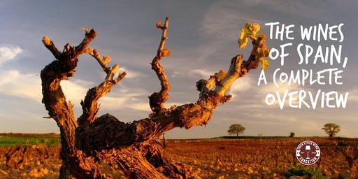 The Wines of Spain: A complete overview