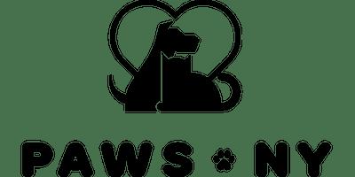 Volunteer Orientation July 24th 2019