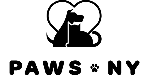 Volunteer Orientation August 13th 2019