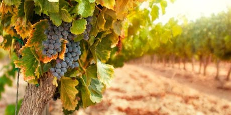 Intro to Grape Growing Seminar tickets