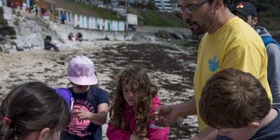 Family Rock Pooling Marine biology adventure - Swanpool Beach, Falmouth