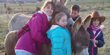Visita a los burros, cabritas y ovejas enanas, gallinas con huevos azules  y perra pastora entradas