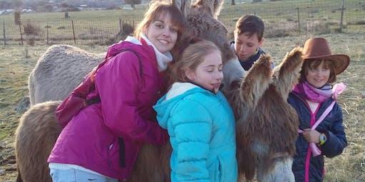 Visita a los burros, cabritas y ovejas enanas, gallinas con huevos azules  y perra pastora