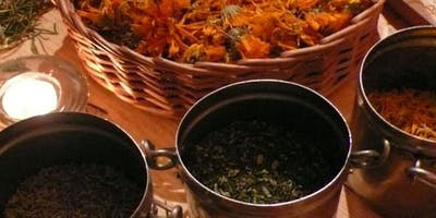 Western Herbs and Dietary Therapy