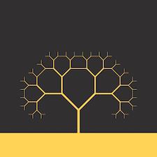 ApuliaSoft logo