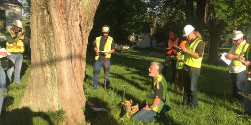 ISA Tree Risk Assessment Qualifications (TRAQ) Course, August 2019