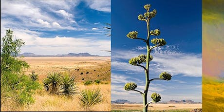 Landscape Painting, Far West Texas-5 Day Workshop tickets