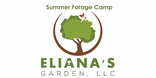 Summer Forage Camp