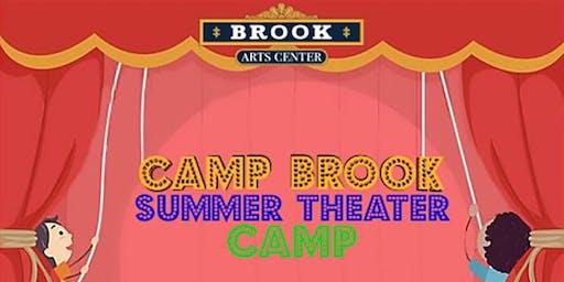 Brook Arts Center 's Summer Theater Camp