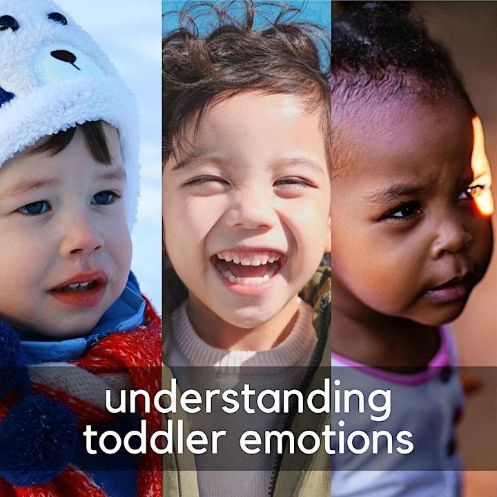 Understanding Toddler Emotions image