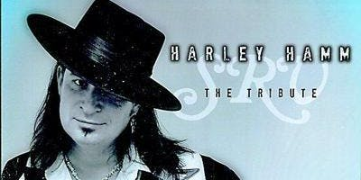Tribute To Stevie Ray Vaughan ~ By Harley Hamm