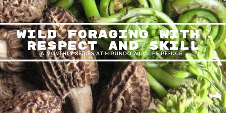 "Foraging Series: How to Eat Mushrooms Safely - Identification  & Foray"" tickets"