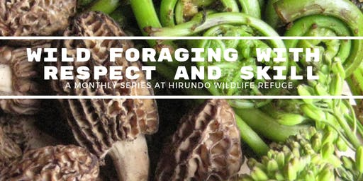 December Foraging: Wintery Snacks & Environmental Crafting