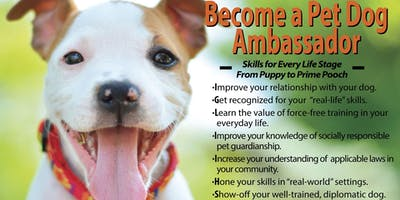 Pet Dog Ambassador - Level 1 (Puppies 4-9 months old)