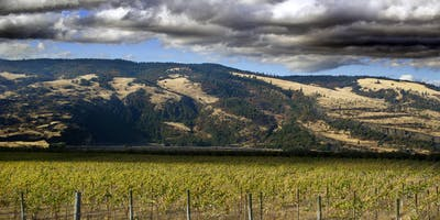 Wines of the World: Oregon (Wine and Beyond Emerald Hills)