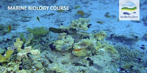 Marine Biology Course