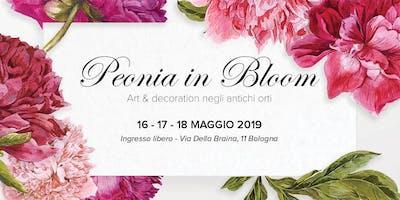 Peonia In Bloom - Art and Decoration negli antichi Orti - 2019