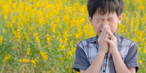 Heuschnupfen - Nachhaltig behandeln mit TCM