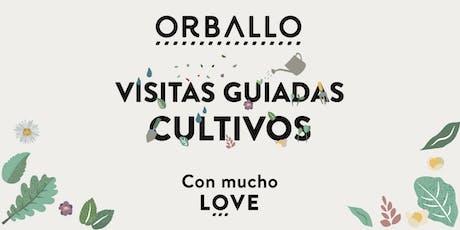 Visita guiada cultivos y degustación Orballo. entradas