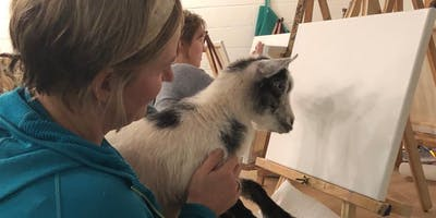 PAINTING WITH SHENANIGOATS