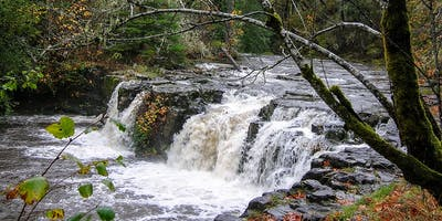 Upper Tualatin Waterfall Tour