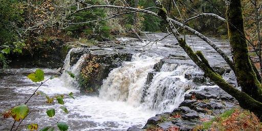 Upper Tualatin Waterfall Tour