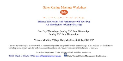 Introduction to Canine Massage Workshop