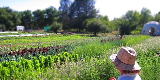 Sustainable Small Acreage Farming & Ranching: A Whole Farm Planning Course