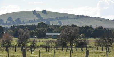 Dowling Forest Precinct Review Community Workshop