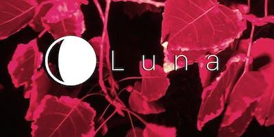 Luna Light Installation