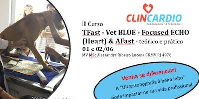 TFast - Vet BLUE - Focused ECO (Heart) & AFast Teórico e Prático