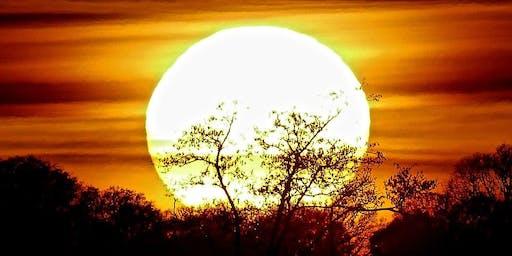 SUMMER SOLSTICE GONG BATH AND SOUND MEDITATION
