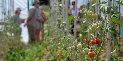 Free Natural Agriculture Farm tour