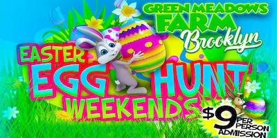 Green Meadows Farm Brooklyn Easter Egg Hunt…Extr