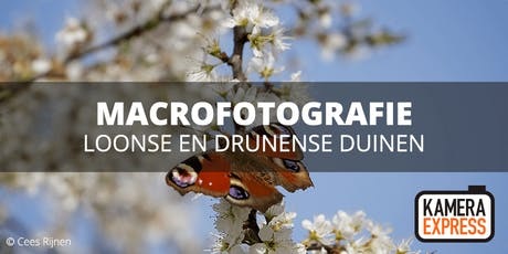 Macrofotografie in Loonse en Drunense Duinen tickets