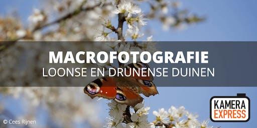 Macrofotografie in Loonse en Drunense Duinen