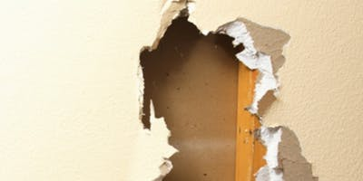 Drywall Repair & Painting Workshop